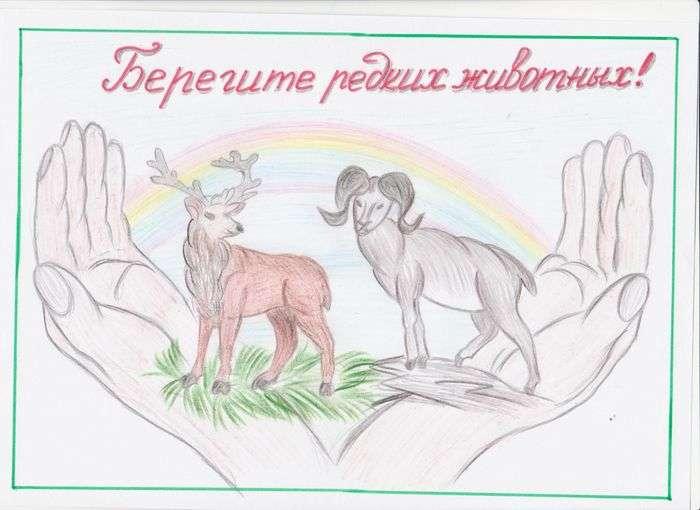 Детские рисунки на тему берегите животных
