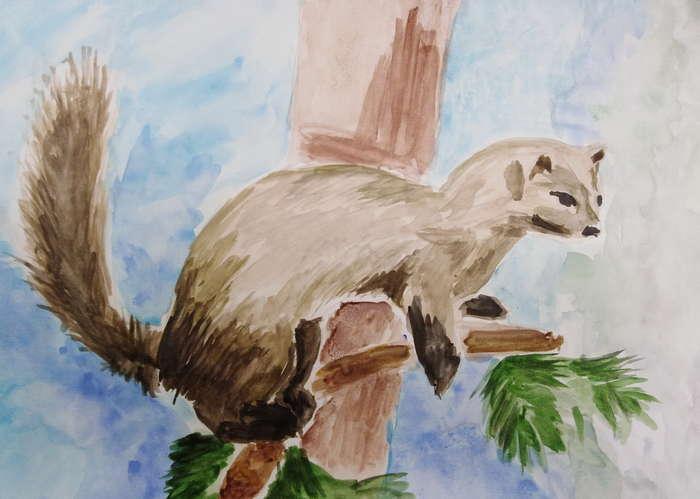 Рисунки животных башкирии