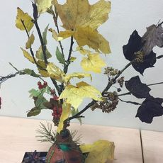 Работа участника - Захарченко Мария